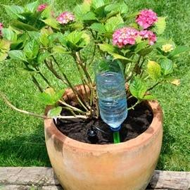 Watering of pots