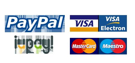 Pago seguro tarjeta visa mastercard iupay paypal redsys bbva